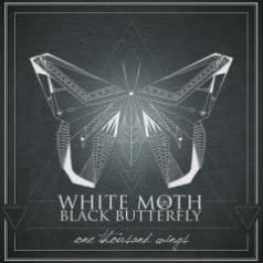 WHITE MOTH BLACK BUTTERFLY One Thousand Wings