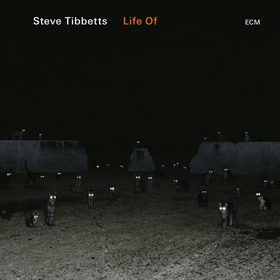 <span>STEVE TIBBETTS</span> Life of