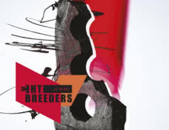 <span>THE BREEDERS</span> All Nerve