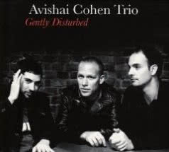 AVISHAI COHEN TRIO Gently Disturbed