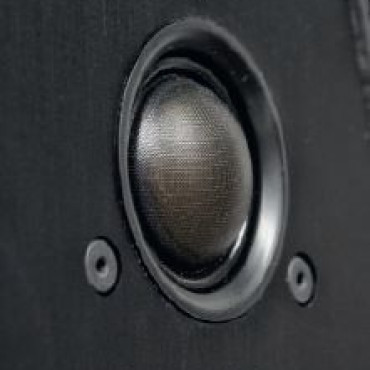 SONUS FABER Guarnieri Evolution