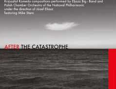 After the Catastrophe