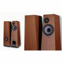 Harpia Acoustic 300B Mini w Premium Sound